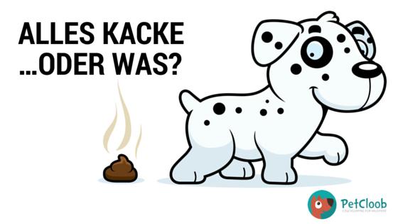 #Hundekot #Petcloob #Hundehaufen #Hunde #Kot