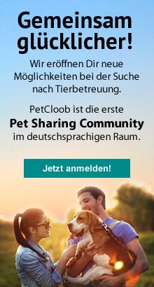 petcloob Tierbetreuung