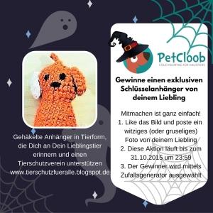 Halloween Gewinnspiel Tierschutz
