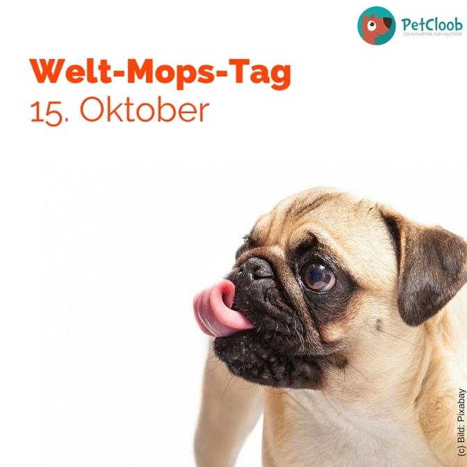 Welt-Mops-Tag 15. Oktober